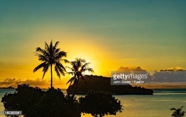 silhouette palm trees on beach against sky at sunset - guam stock pictures, royalty-free photos & images