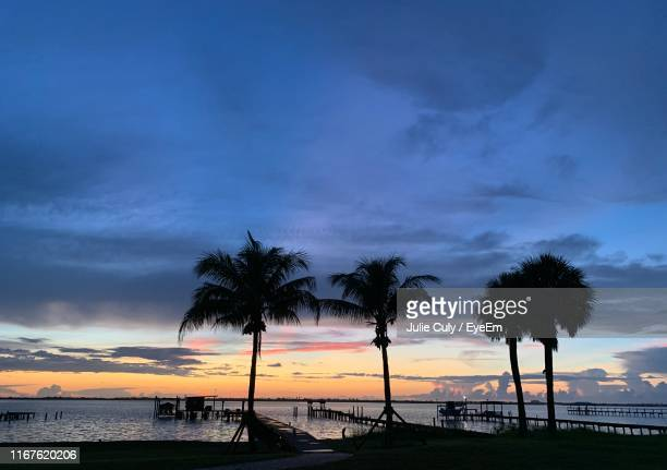 silhouette palm trees on beach against sky during sunset - julie culy stock pictures, royalty-free photos & images