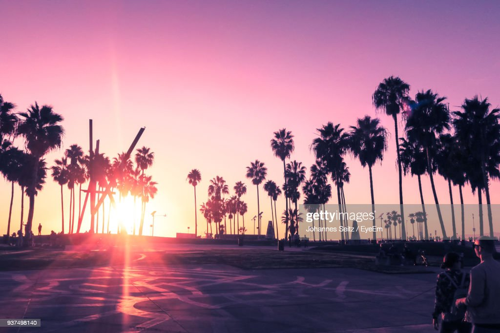 Silhouette Palm Trees On Beach Against Sky During Sunset : Stock Photo
