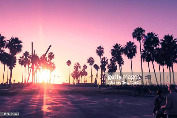 silhouette palm trees on beach against sky during sunset - kalifornien stock-fotos und bilder