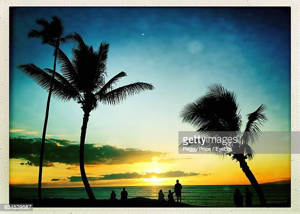 Silhouette People And Palm Trees And Beach During Sunset