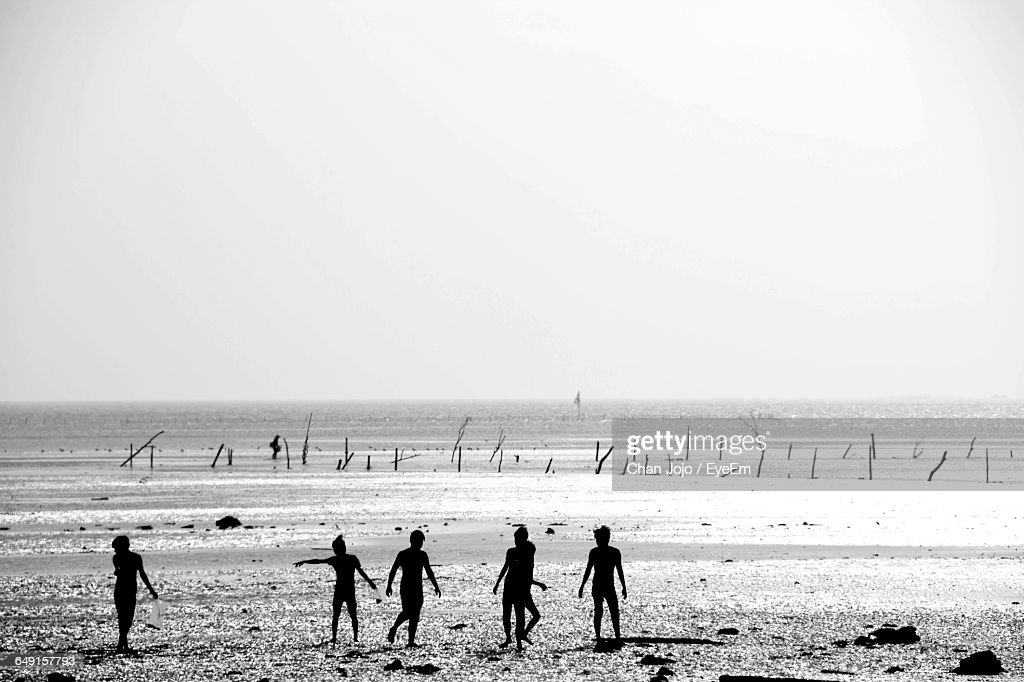 Silhouette People At Beach Against Clear Sky : Stock Photo