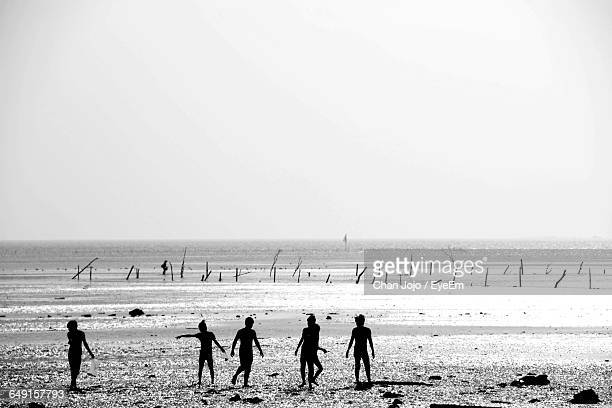 Silhouette People At Beach Against Clear Sky