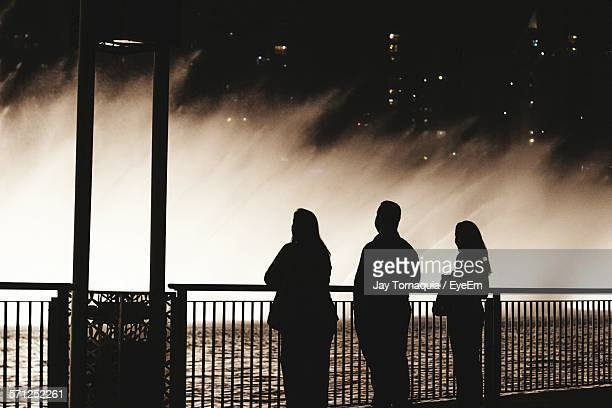 Silhouette People Looking At Fountains In City At Night
