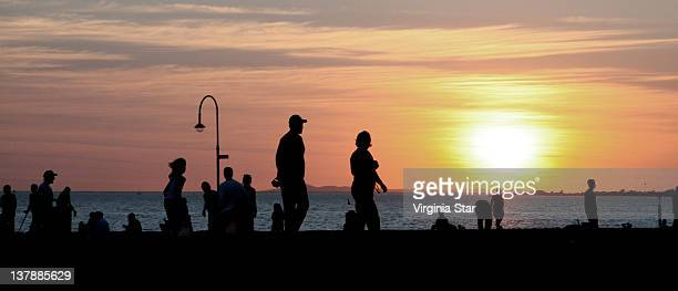 Silhouette people on beach at sunset