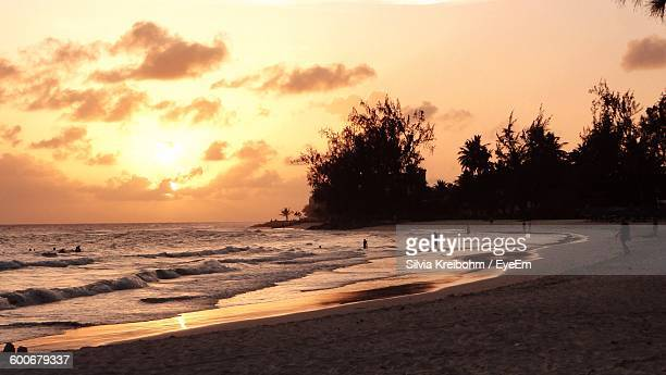 silhouette people on beach at sunset - bridgetown barbados stock photos and pictures