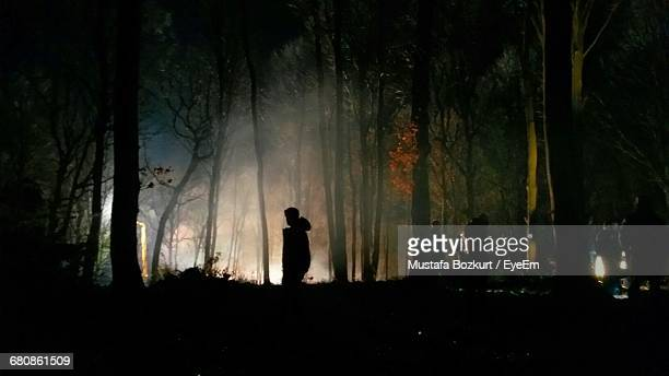 Silhouette People Standing By Trees In Forest At Night