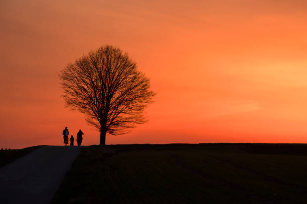 Silhouette people standing on field against sky during sunset,Rottenburg am Neckar,Germany