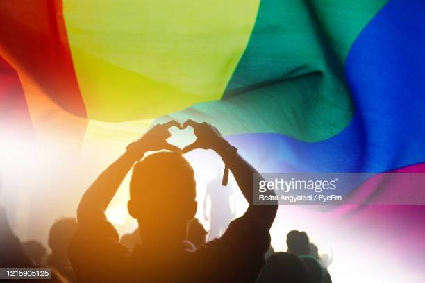 silhouette people with rainbow flag - lgbtq stock pictures, royalty-free photos & images