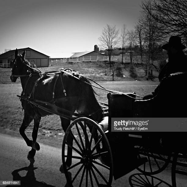 Silhouette Person Riding Horse Cart On Road
