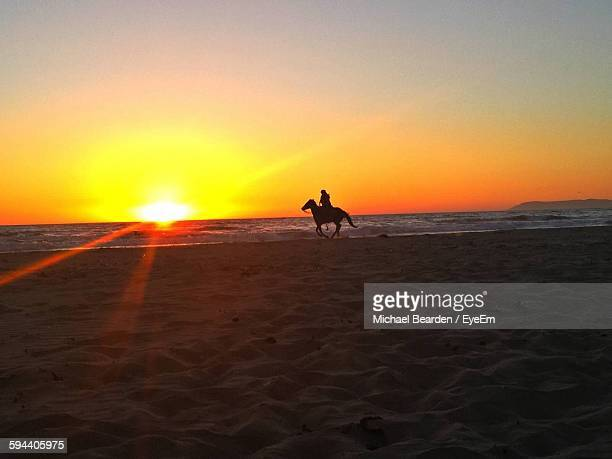Silhouette Person Riding Horse On Shore Against Sunset Sky
