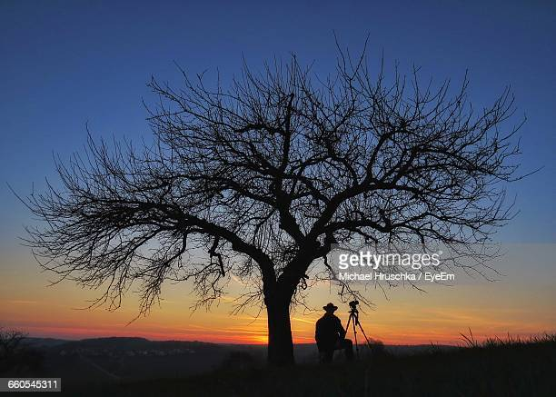 silhouette person standing with tripod by bare tree during sunset - michael hruschka stock-fotos und bilder