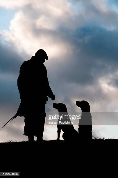 Silhouette pheasant hunter with dogs against cloudy sky
