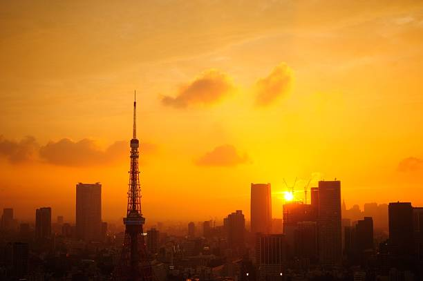 Silhouette Tokyo Tower Against Buildings At Sunset Wall Art