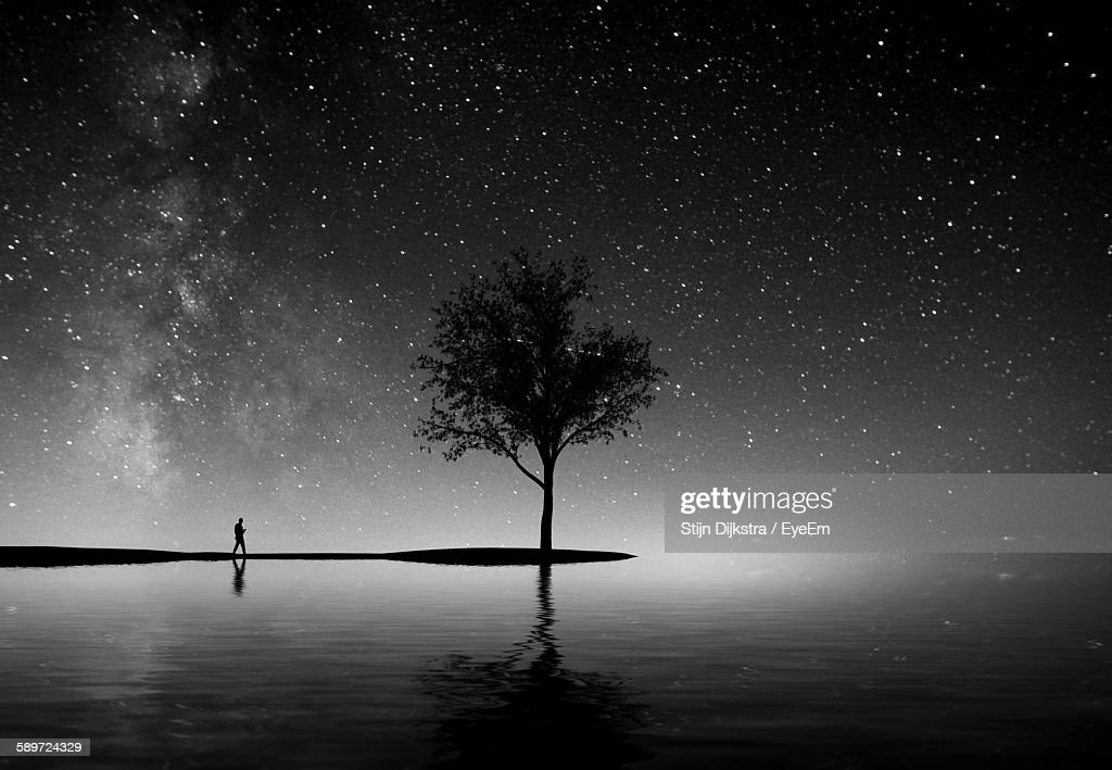 Silhouette Tree And Lake Against Sky At Night : Stock Photo