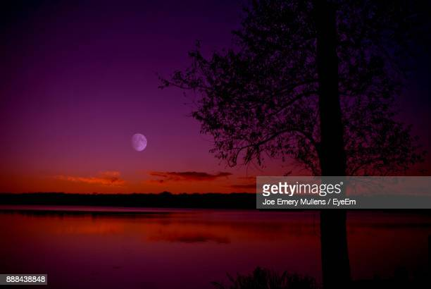 silhouette tree by lake against sky at sunset - emery stock photos and pictures