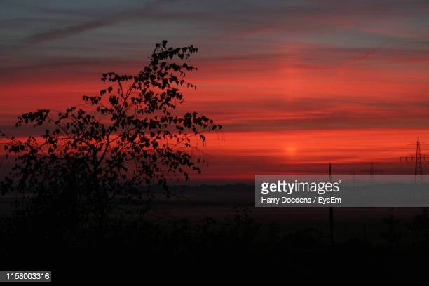 silhouette tree on landscape against sky during sunset - drenthe stock pictures, royalty-free photos & images