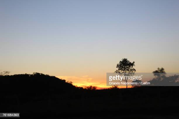 silhouette trees against clear sky during sunset - file:the_wyoming,_orlando,_fl.jpg stock pictures, royalty-free photos & images