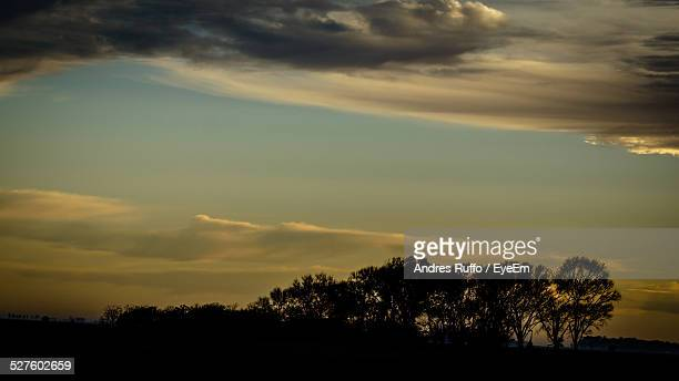 silhouette trees against cloudy sky at dusk - andres ruffo stock pictures, royalty-free photos & images