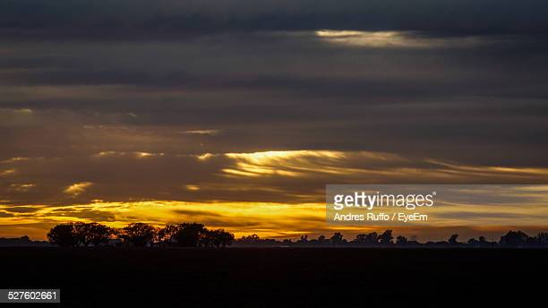 silhouette trees against cloudy sky during sunset - andres ruffo stock pictures, royalty-free photos & images
