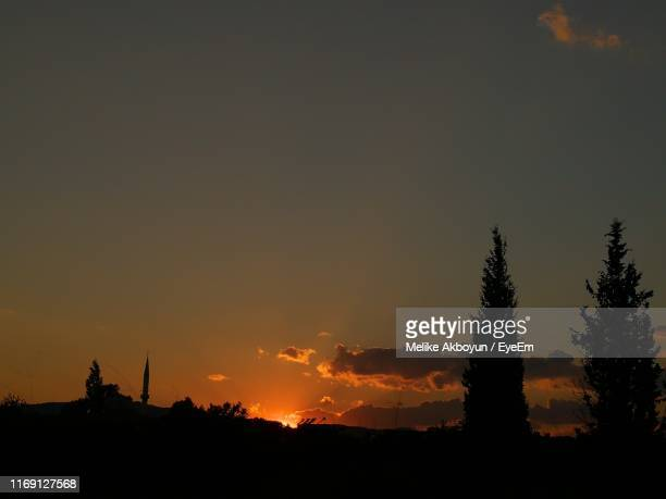 silhouette trees against sky during sunset - melike stock pictures, royalty-free photos & images