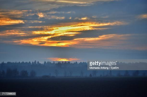silhouette trees against sky during sunset - anfang stock pictures, royalty-free photos & images