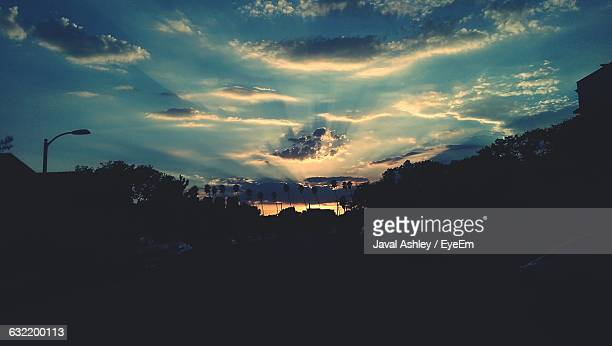 silhouette trees against sky - alhambra city of los angeles stock photos and pictures