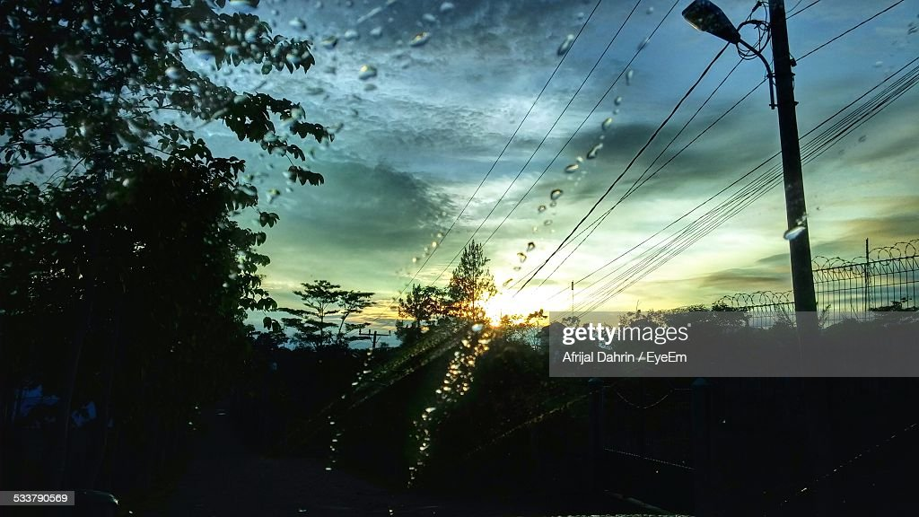 Silhouette Trees Against Sky Seen Through Glass : Foto stock