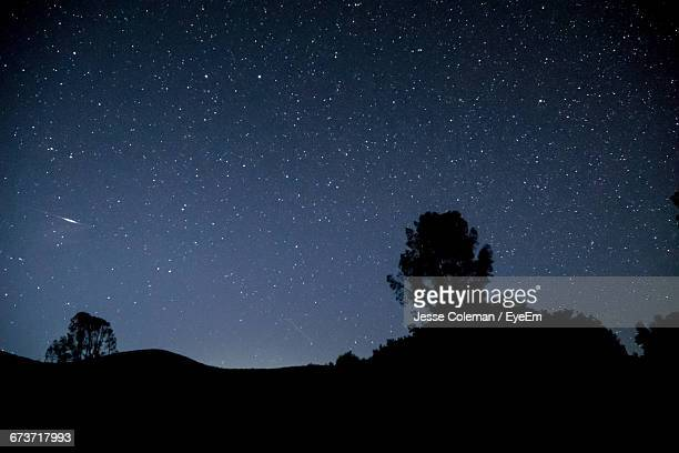 silhouette trees against star field - jesse coleman stock photos and pictures