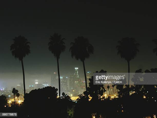 Silhouette Trees And Illuminated City Against Clear Sky At Night
