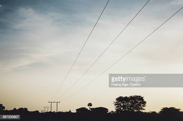 Silhouette Trees And Telephone Poles Against Sky During Sunset