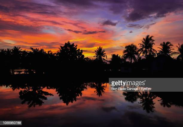 silhouette trees by lake against sky during sunset - carvajal ストックフォトと画像