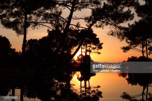silhouette trees by lake against sky during sunset - biscarrosse photos et images de collection