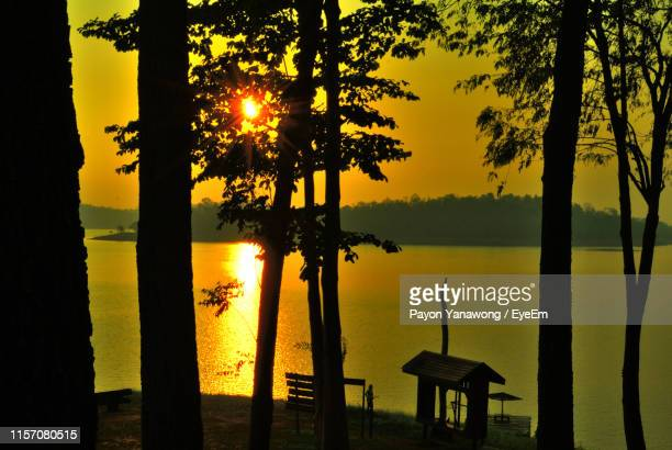 silhouette trees by lake against sky during sunset - thai mueang photos et images de collection