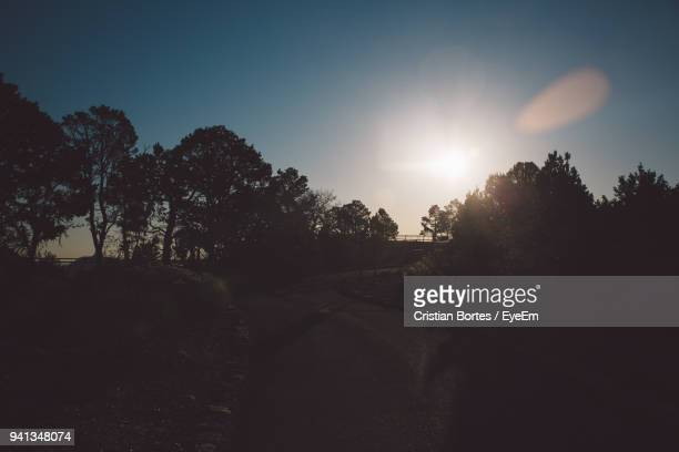 silhouette trees by road against sky during sunset - bortes stock pictures, royalty-free photos & images