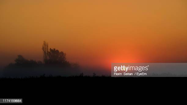 silhouette trees on field against orange sky - florin seitan stock pictures, royalty-free photos & images