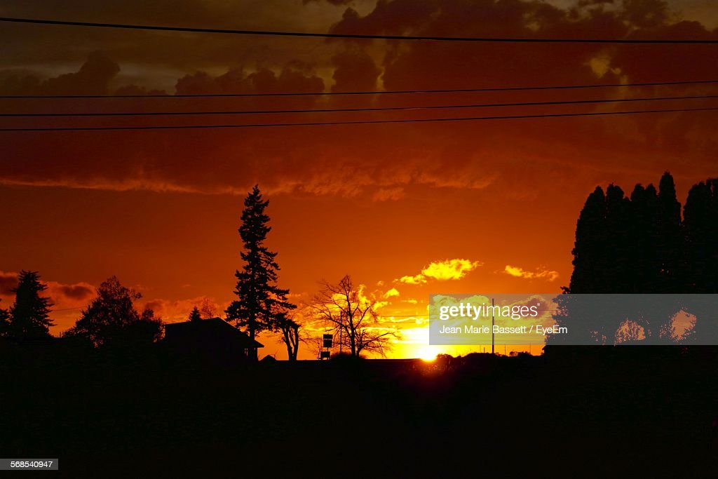 Silhouette Trees On Field Against Orange Sky : Stock Photo