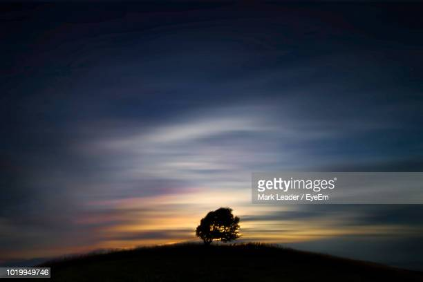 silhouette trees on field against sky at sunset - mark's stock pictures, royalty-free photos & images