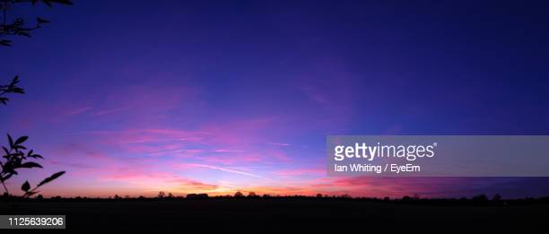 silhouette trees on field against sky at sunset - 夕暮れ ストックフォトと画像