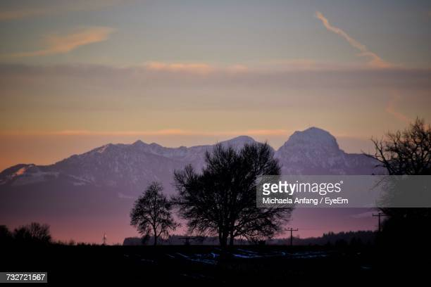 silhouette trees on landscape against sky during sunset - anfang stock pictures, royalty-free photos & images