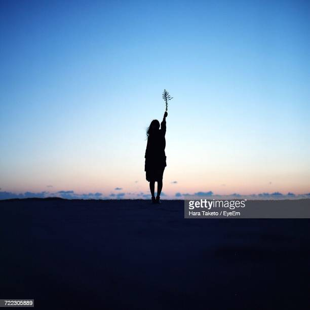 Silhouette Woman Holding Plant While Standing On Field Against Sky During Sunset