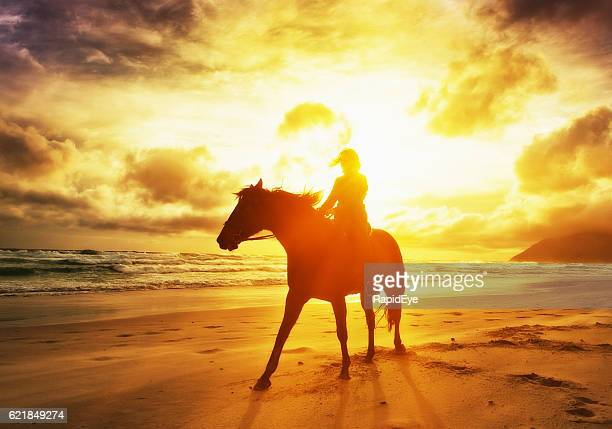 Silhouetted by dazzling golden sunset, woman rides horse along shoreline