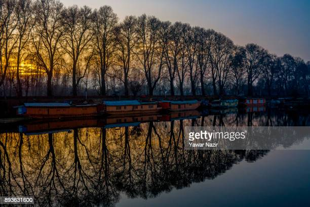 Silhouetted Chinar trees are reflected on the waters of Dal lake during a cold day on December 15 2017 in Srinagar the summer capitol of Indian...
