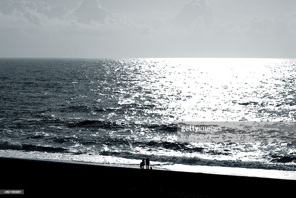 Silhouetted family on beach : Stock Photo
