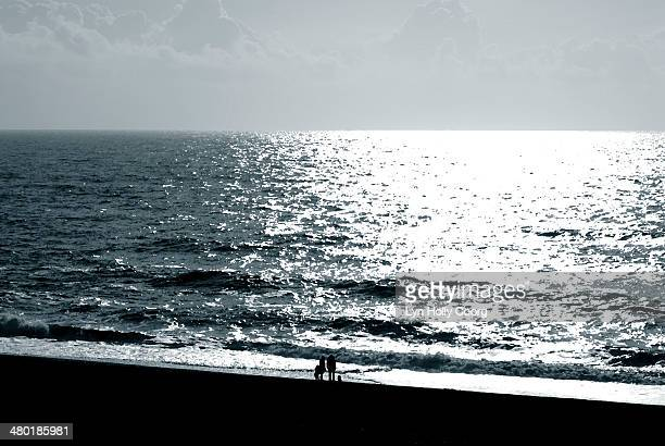 silhouetted family on beach - lyn holly coorg stock pictures, royalty-free photos & images