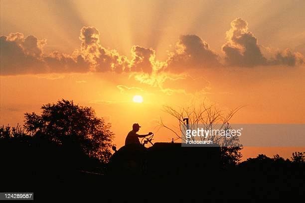 Silhouetted farmer on a tractor at sunset