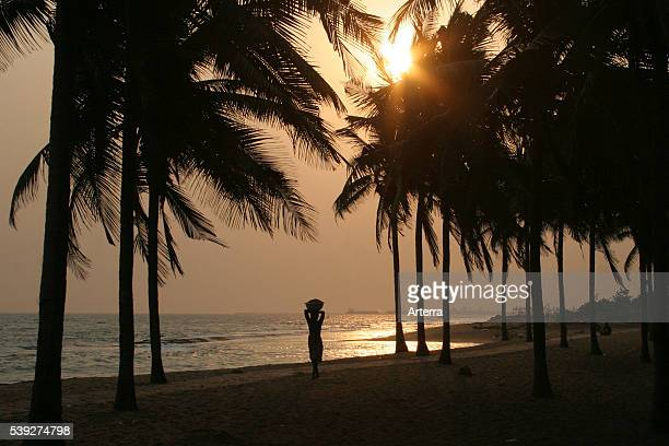 Silhouetted palm trees and woman carrying merchandise on her head on beach at sunset Gulf of Guinea Lome Togo West Africa