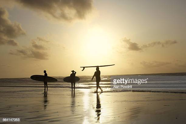 Silhouetted surfers in sunset by the sea
