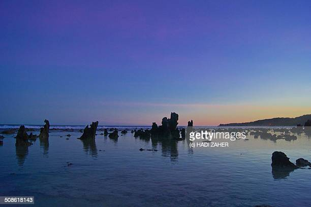silhouettes in the sunset, anibare beach - nauru stock pictures, royalty-free photos & images