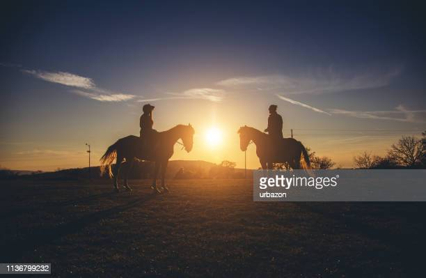 silhouettes of a couple on horses at sunset - male animal stock pictures, royalty-free photos & images
